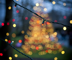 christmas, lights, and winter image