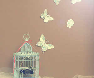 butterfly, cage, and Dream image