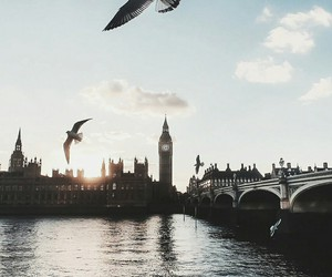 london, Big Ben, and birds image