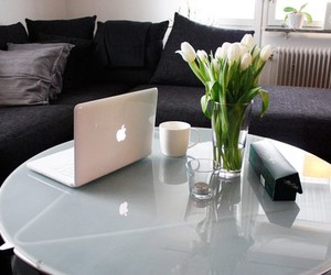 apple, flowers, and home image