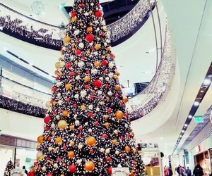 celebrate, holiday, and christmas image