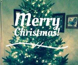 merry christmas, quotes, and tree image