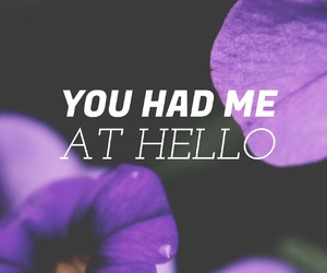 hello, quotes, and flowers image