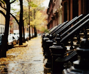 street, autumn, and new york image