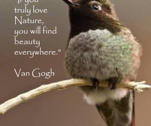 quote, love, and beauty image