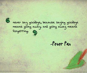 peter pan, quotes, and goodbye image