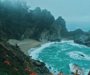 sea, beach, and flowers image