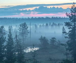Image by Alaska
