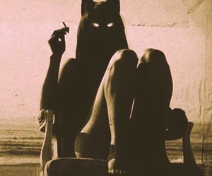 cat, cigarette, and dark image