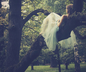 girl, tree, and dress image