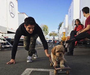 teen wolf, tyler posey, and dog image