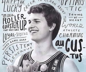 tfios, ansel elgort, and augustus waters image