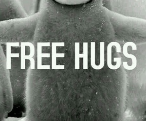 free hugs and 🐧 image