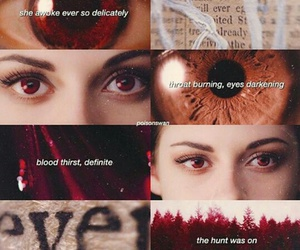 always, awake, and bella cullen image