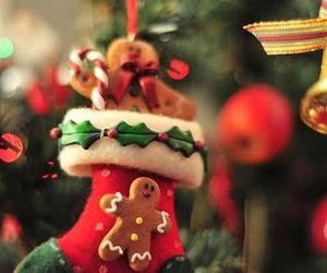 christmas and natal image