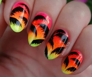 colourful, nail, and colours image