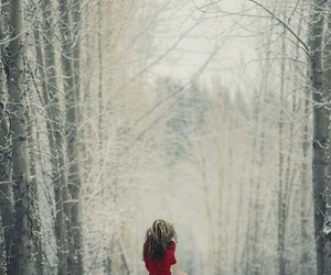 beautiful, forest, and run image