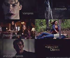 tvd, vampires, and the vampire diaries image