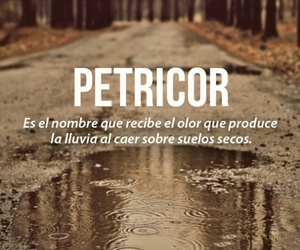 lluvia, petricor, and words image