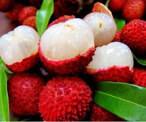 beautiful, tree, and lychee image