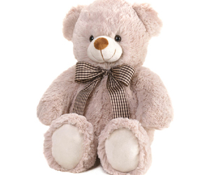 love symbol, every loves a teddy bear, and all ages above 3 image