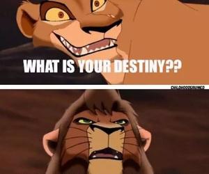 the lion king and kovo image