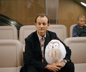 bill murray and lost in translation image