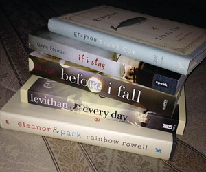 books, before i fall, and every day image