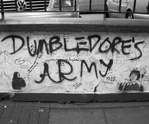harry potter, dumbledore's army, and dumbledore image