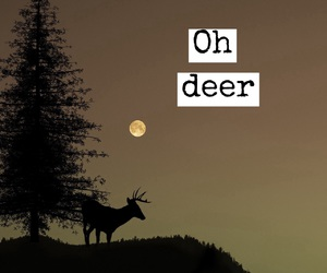 deer and quotes image