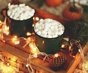 lights, marshmallows, and winter image