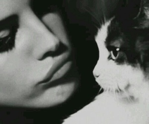 lana del rey, cat, and black and white image