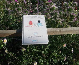 book, summer, and flowers image