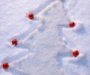 snow, christmas, and christmas tree image