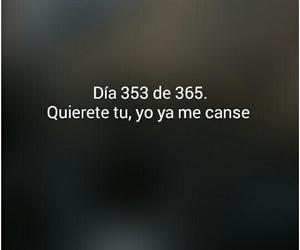 amor, 365 dias, and love image