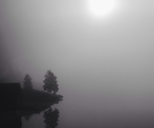 black and white, fog, and landscape image
