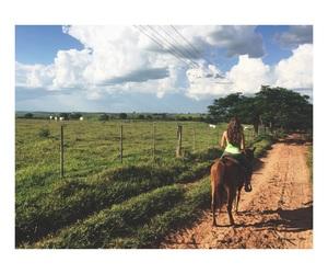 horse, nature, and horsebackriding image