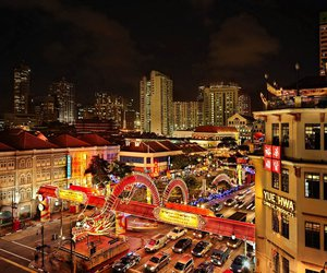 chinese new year, dragon, and singapore image