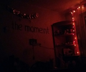 beauty, the moment, and lights image