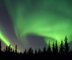 nature and lights. nightsky image