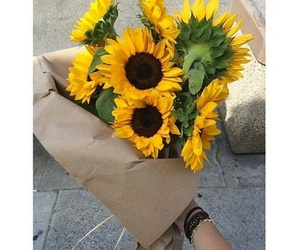 flowers and sunflowers image