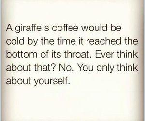 giraffe, funny, and coffee image