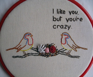 bird, crazy, and funny image