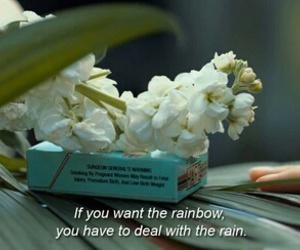 quotes, rainbow, and rain image