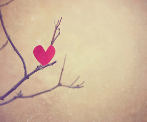 heart and tree image