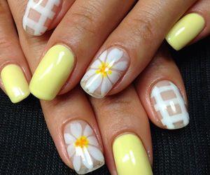 nail, nails, and nails polish image