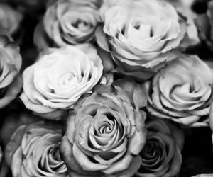 beautiful, black and white, and sad image