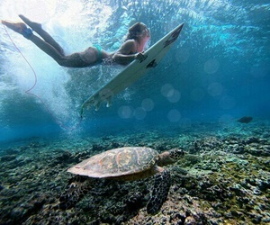 girl, surf, and turtle image