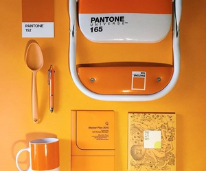 aesthetic, pantone, and orange theme image