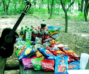 Cheetos, coca cola, and forest image